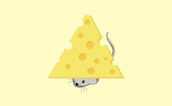 Метод швейцарского сыра
